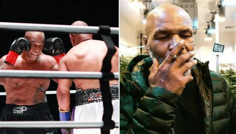 Boxing: Mike Tyson says he smoked cannabis before Roy